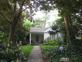 Sunny DC-area summer rental with cat care