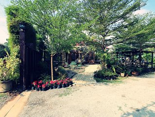 Leafy Greens Chiangmai : Peanut House (PH)