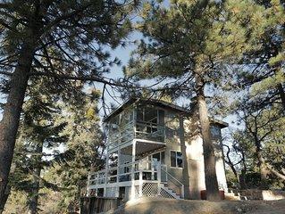Cozy Mountaintop Cabin at Lake Arrowhead/ Big Bear