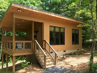 Tiny 'Black Bear' cabin minutes from Asheville and Weaverville!
