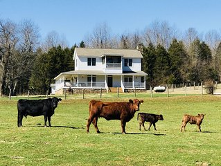 Farmhouse on 150 acres, great family or hunters' getaway, 15 minutes from town!
