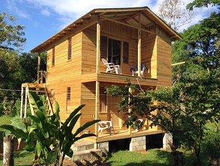 Jamaica Jungalo – Forest at Camp Cabarita Resort