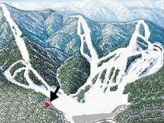 Location! Location! 100 yards to Bear Mtn slopes. Ski Out. Private sledding run.