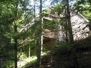 Lake Watauga Retreat in the Woods