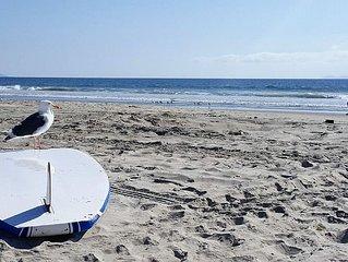 Coronado beach life!