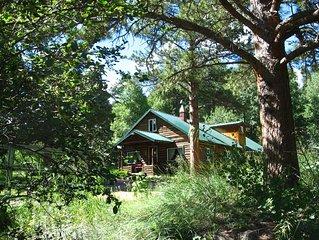 Cascading Creek Log Cabin in the Rocky Mountain Wilderness