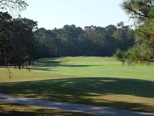 GREAT NOV/DEC DISCOUNT! Golf Course View, Newly Updated/Near Beach, Pets OK