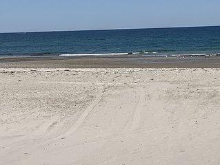 White horse beach in Plymouth