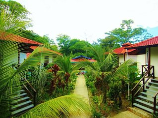 Jungle Wildlife and beaches just steps away from your door