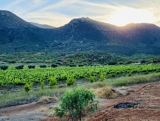 Private Vineyard located in the heart of Valle De Guadalupe. All to yourself!