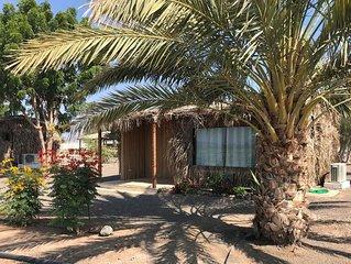 Idyllic farm retreat:  pool, yoga, games, explore mountain and desert