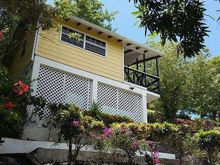 Pineapple House A Tropical Retreat