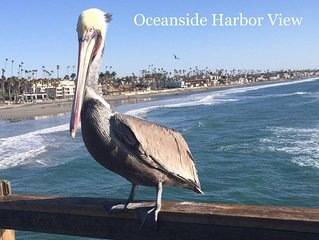 Family Fun Resort on the Beach with Sand, Surf, Harbor in Oceanside, California