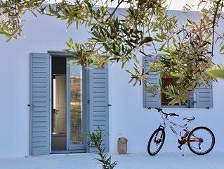 NEW Villa Skarkos View.