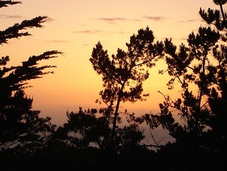 Peaceful Vacation Sanctuary - Great Ocean & Forest Views in Pebble Beach!