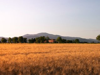 Agriturismo Il Pescinone - Ginestra, tra campagna e mare