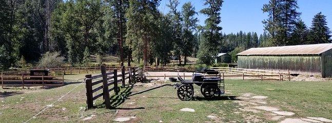Arène extérieure pour nos invités à cheval.
