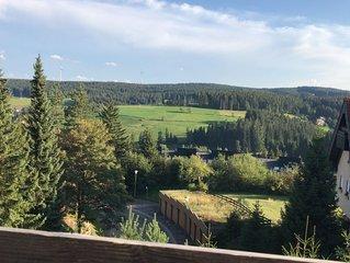 Helle und gemutliche 2-Zi.-Wohnung mit Balkon auf 980 m Hohe!