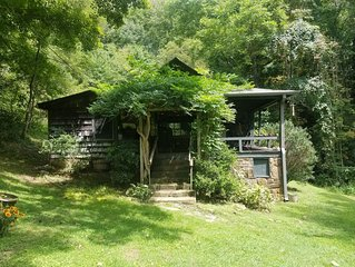 Bears Den: Private, Comfortable, Well Kept Cottage w Hot Tub overlooking River.