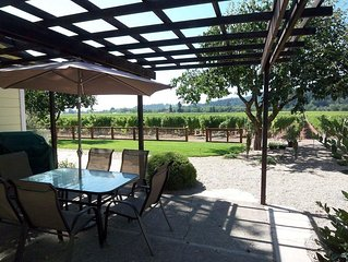 Lovely Healdsburg Vineyard Home - 3br/2ba (up to 8 guests, children welcome)