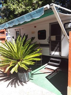 Cozy Trailer Among The Redwoods
