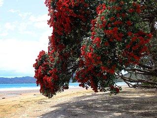 'SAILS' BEACHFRONT ~ COOPERS BEACH