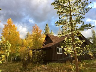Fabulous Cabin On 4 Acres, Hot Tub, Fire Pits, Fishing, Golf, Mtn Biking, Views!