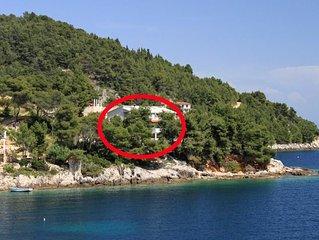 Two bedroom apartment near beach Cove Torac bay - Torac (Hvar) (A-575-b)