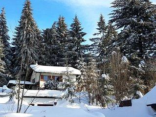Ferienhaus Kristall, direkt in St. Englmar - mit 'Bayerischem Wald' im Garten!