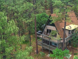 Ideal Cabin Experience Set Among Tall Ponderosa Pine Trees