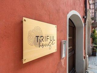 TrifulHouse holiday apartments , unit. 1 (Alba historical city center)