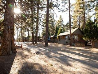 Big Pines~Cozy Studio Lodge Cabin~Walk To Lake~Full Kitchen~Pet Friendly~