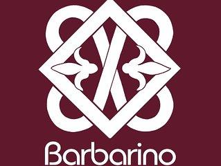 BARBARINO - Appartamento a 100m da  Ospedale Spedali Civili di Brescia