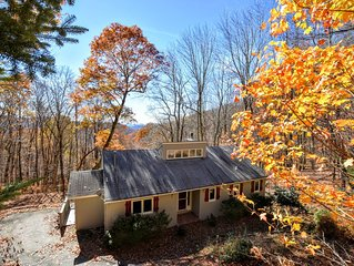 Mountain Top Cabin in Wolf Laurel, just North of Asheville