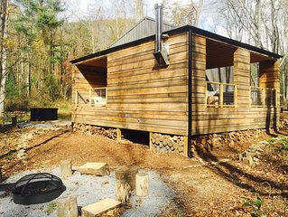 Brand new cabin! Hot tub, fire pit, mountain views, hikes, short Uber downtown.