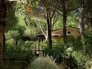 Bungalow in der Ferienanlage Rocchette