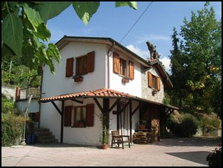 Totally private cottage with own pool, amazing views and close to Barga!