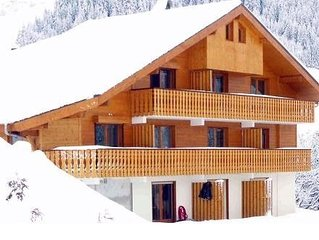 Fantastic 2 bedroom apartment in Chatel