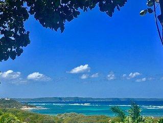 'BONHEUR INDIGO' Face à la mer & dans votre écrin de verdure , détendez-vous. 3*