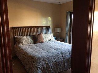 Brand New Luxury 2 Bedroom - 2 Bath Condo 1,200 Sq. Ft.