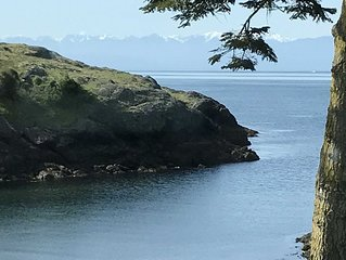 Waterfront Cove, West Side Of San Juan Island, Sandy Beach, Prime Orca location