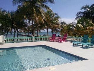 Blue Dolphin 'Nicest House on the Island'