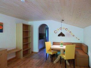 Apartment -1 Schlafraum DU/WC Nr. 3   'Edelweiß' - Berghof Felder