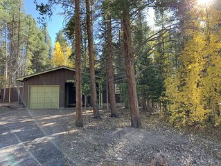 Nestled In The Pine Trees Between Downtown Leadville And Turquoise Lake 3Bd 2Bth