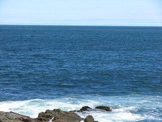Bar Harbor Panoramic Ocean Front! Kids & Dogs Love It! Wildlife, Fishing, Fun!