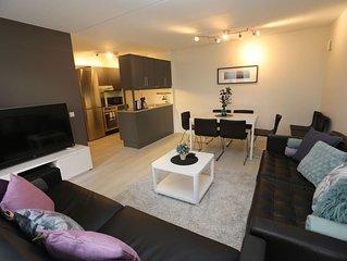 Sonderland Apartments - Mandalls gate 12-1 (Sleeps 9 - 3 BR)