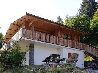 Chalet 8p, La Bresse, 5mn des pistes, Sauna
