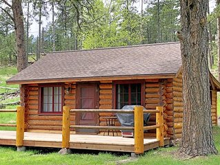 Updated Vintage 1930's Log Cabin at Custer Park Entrance & Stockade Lake