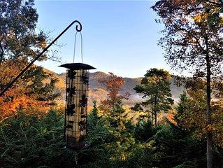 Close to DT Asheville, Biltmore Est, Chimney Rock, L Lure, Black Mt, Blue Ridge