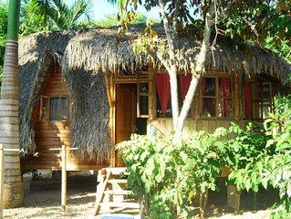 #1 Private Jungle Beach Cabin #1